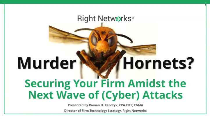 Murder Hornets? Securing Your Firm Amidst the Next Wave of (Cyber) Attacks thumbnail